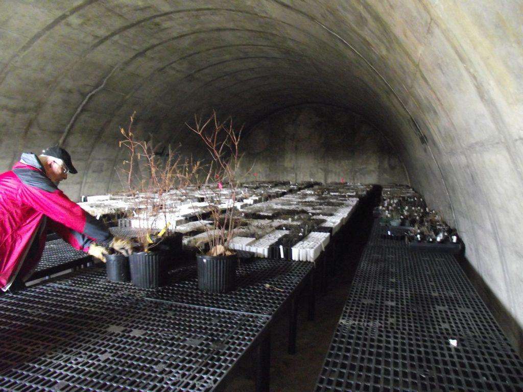 110331 bunker interior 1