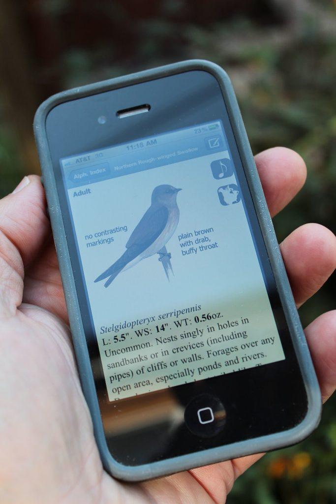 110910 bird app