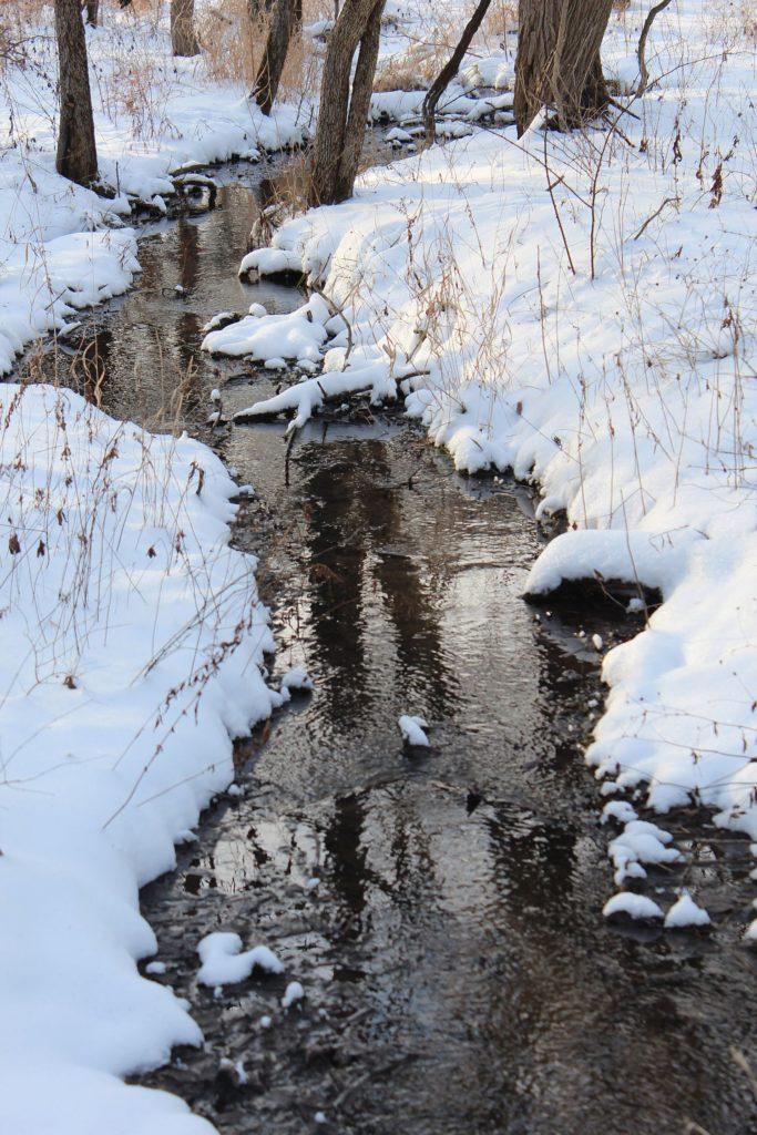120114 creek