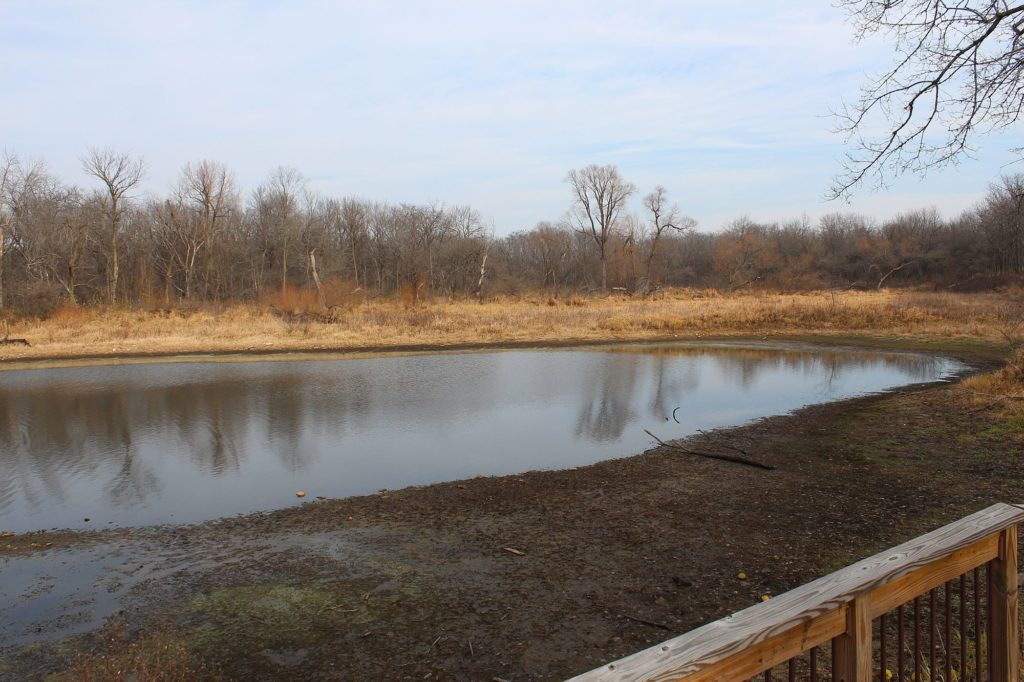121122 prairie creek pond